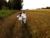 Fängerinnen im Getreidefeld